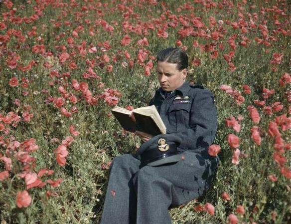 Wing Commander Guy Gibson Poppy Field 22 July 1943