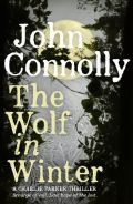Wolf in Winter - Available from Amazon