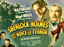 Voice of Terror 01
